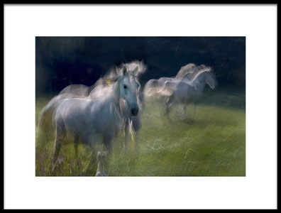 Art print titled  Everyday Life On Pasture by the artist milan malovrh