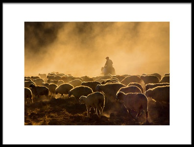 Art print titled  Shepherd and Herd by the artist feyzullah tunc
