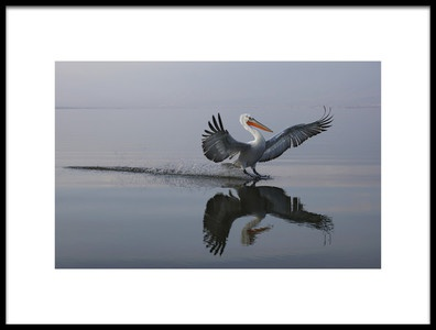 Art print titled  Sunset Landing by the artist Julio Lozano Brea