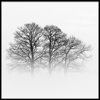 Buy this art print titled A Hazy Shade of Winter by the artist Oliver Buchmann