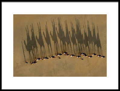 Art print titled A Journey of Shadows by the artist Louise Wolbers