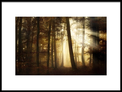 Art print titled A New Day by the artist Norbert Maier
