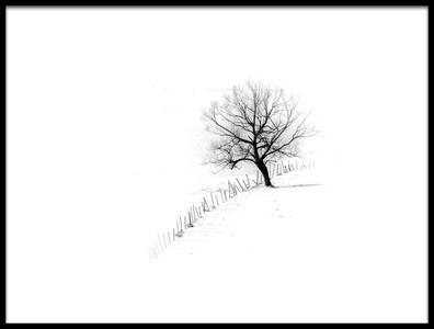 Art print titled A Single Tree by the artist Rabia Basha