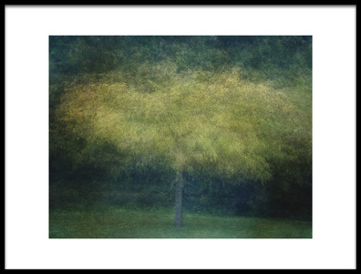 Buy this art print titled A Tree by the artist Katarina Holmström