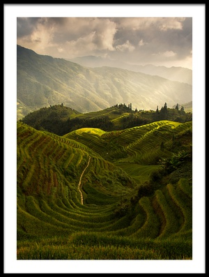 Buy this art print titled A Tuscan Feel In China by the artist Max Witjes