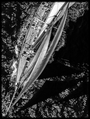 Buy this art print titled Above the Racing Ship by the artist Marc Pelissier