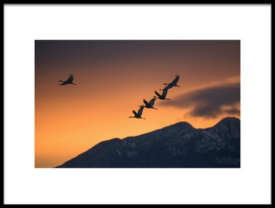 Art print titled Above the Snowy Mountains by the artist  Hao Jiang