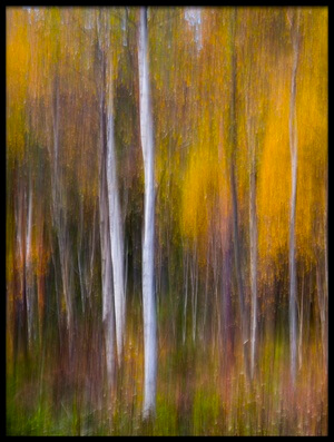 Buy this art print titled Abstract Fall II by the artist Andreas Christensen