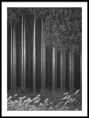 Buy this art print titled Afforestation by the artist Tsuneya Fujii