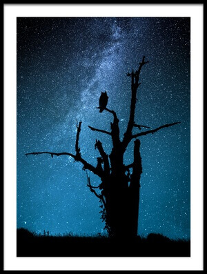Buy this art print titled Alone In the Dark by the artist Manu Allicot