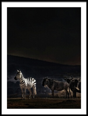 Buy this art print titled An Evening In Kenya by the artist Piet Flour