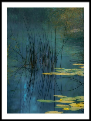 Art print titled Aqua by the artist Andreas Agazzi