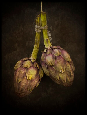 Buy this art print titled Artichoke by the artist Alida van Zaane