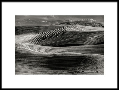 Art print titled Artistic Wheat Fields by the artist Charles Lai