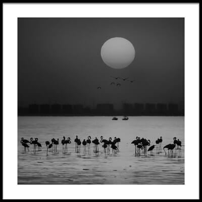 Buy this art print titled At a Glance by the artist Ahmed Thabet