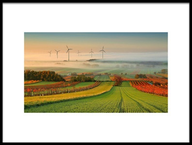 Buy this art print titled Autumn Atmosphere In Vineyards by the artist Matej Kovac