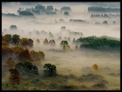 Art print titled Autumn Dream by the artist Roberto Marini