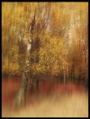 Art print titled Autumn Impression by the artist Gustav Davidsson