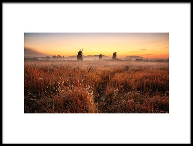 Buy this art print titled Autumn Morning by the artist Tiger Seo