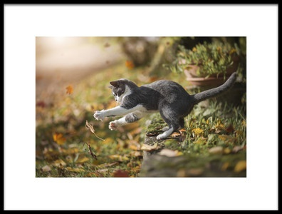 Art print titled Autumn Play by the artist Dejana MŠ
