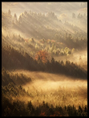 Buy this art print titled Autumn Rays by the artist Martin Rak