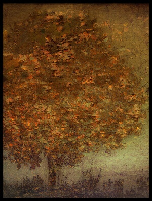 Art print titled Autumn Tree by the artist Nel Talen