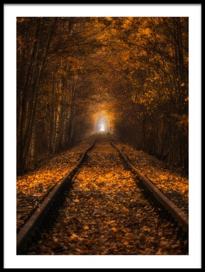 Buy this art print titled Autumn Tunnel by the artist Pawel Uchorczak