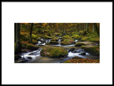Art print titled Autumn Waters by the artist Norbert Maier