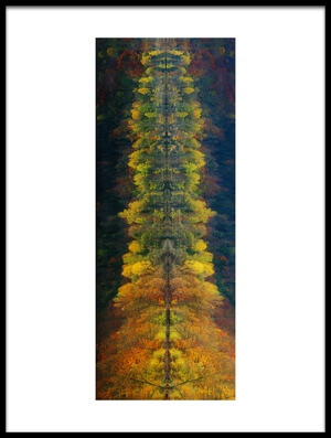 Buy this art print titled Autumnal Silence by the artist Burger Jochen