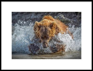 Art print titled Bear Action by the artist Roshkumar