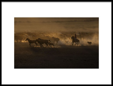 Art print titled Beautiful the Country of Horses by the artist Ramiz Şahin