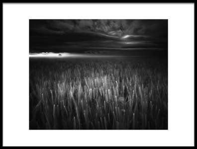 Art print titled Between Earth Amp Sky by the artist Luca Rebustini