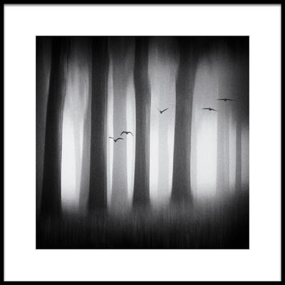 Art print titled Between the Trees by the artist Jacqueline van Bijnen