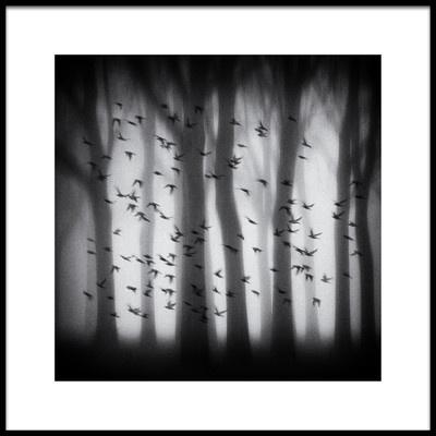 Art print titled Birds by the artist Jacqueline van Bijnen
