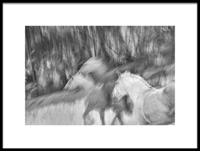 Art print titled Black and White Winter by the artist milan malovrh