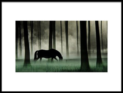 Art print titled Black Beauty by the artist Annemieke