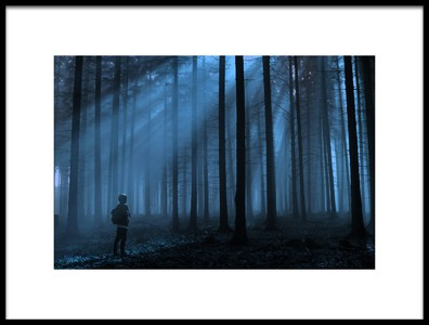 Art print titled Blue Forest by the artist David Charouz