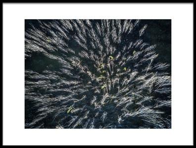 Art print titled Blue Mangrove by the artist Zhou Chengzhou