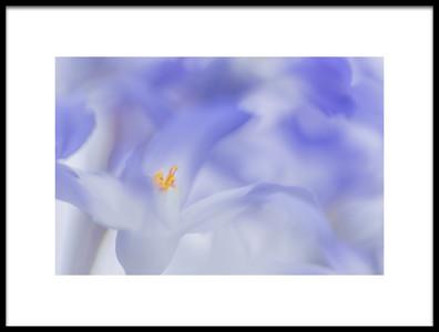 Buy this art print titled Blue Waves by the artist Roelof de Hoog