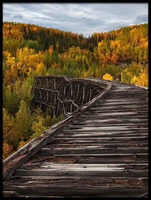 Art print titled Bridge to Nowhere by the artist Doug Roane