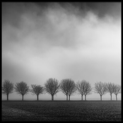 Buy this art print titled Brighten by the artist Christophe Staelens