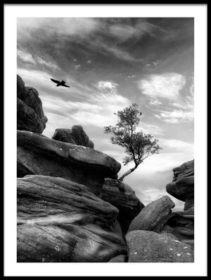 Buy this art print titled Brimham by the artist Therion