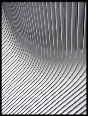 Art print titled Calatrava Curves # 2 by the artist Linda Wride