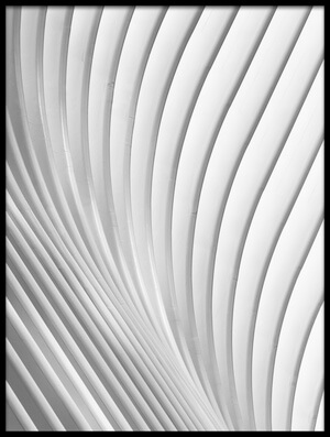 Buy this art print titled Calatrava Lines by the artist Christopher Budny
