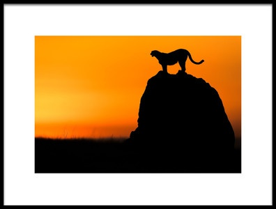 Art print titled Calling for a Hunt by the artist Faisal ALnomas