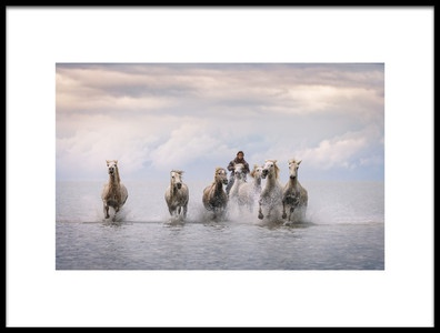 Art print titled Camargue Horses by the artist Antoni Figueras