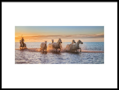 Art print titled Camargue Horses II by the artist Antoni Figueras