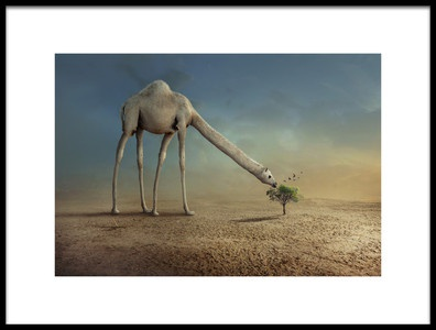 Art print titled Camel and Tree by the artist sulaiman almawash