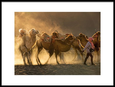Art print titled Camel Station by the artist Libby Zhang