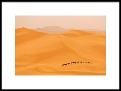 Buy this art print titled Camels Caravan In Sahara by the artist Dan Mirica